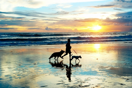 L'uomo con un cane in esecuzione sulla spiaggia al tramonto, isola di Bali, Indonesia