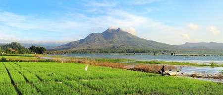 Landscape with onion fields, lake and volcano Batur at sunrise. Bali photo