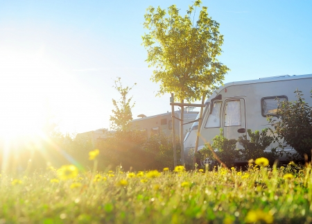 camper: Camping site in the morning sun