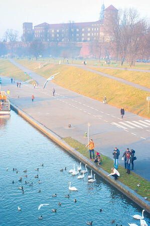 KRAKOW, POLAND - JANUARY 03, 2014: People feeding birds at Wisla riverbank in Krakow, Poland. Wawel Castel on the background.