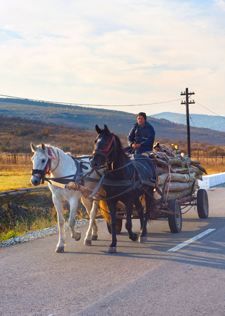 HATEG, ROMANIA - OCT 25, 2012: Man driving horse cart by the country road. Horse cart on Romanian roads are a kind of landmark. Editorial