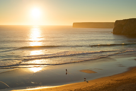 dog rock: Aerial view of beach with surfers at sunset in Portugal.