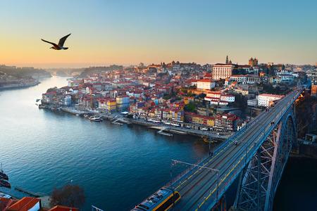 dom: Seagull volant dans le ciel de la ville de Porto, Portugal Banque d'images