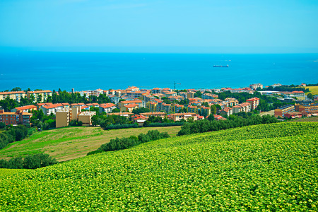 small country town: Landscape with sunflowers field and small town on the sea coast. Ancona, Italy Stock Photo