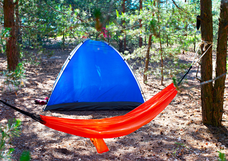 hammock: Camping tent and hammock in the forest
