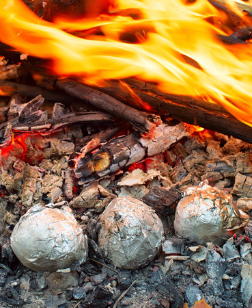 baked: Baked potatoes wrapped with aluminum foil roasting in a bonfire.