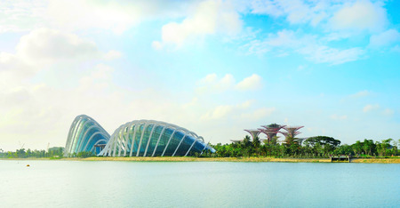 the bay: Singapore river and Gardens by the Bay in the morning sunlight