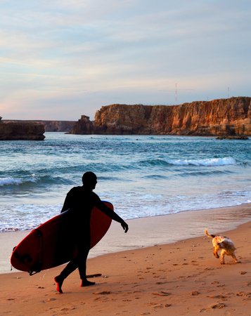 Surfer with a funny dog walking at sunset on the beach Stock Photo