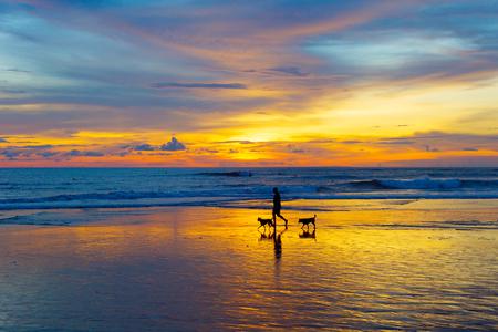 夕暮れ時のビーチに犬と歩いて人のシルエット。バリ島、インドネシア 写真素材