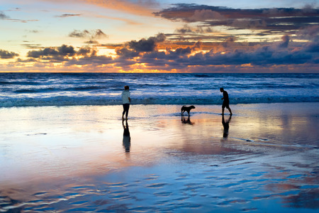 Couple playing on beach with dog, scenic sunset seascape in background, Bali, Indonesia Banco de Imagens