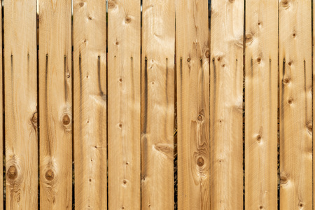 Wide angle weathered wood background surface. New wooden wall texture planks with knots.