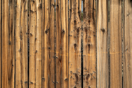 Weathered wood background surface. Wooden wall texture planks with knots.