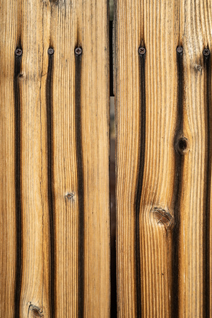 Vertical close up weathered wood background surface. Wooden texture with nails.