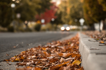 Autumn Leaves on Ground By Curb With Car Driving In Background. Selective Focus With Copy Space.