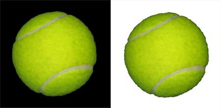 Vector Tennis Ball Vector