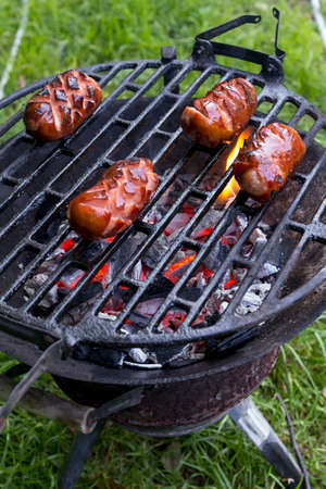 hot grill: roasted meat on a hot grill