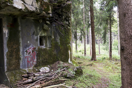 fortifications: War fortifications in the woods Stock Photo