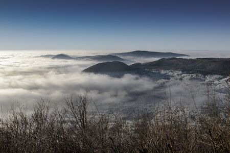 inversion: Beautiful snowy winter landscape with trees Stock Photo