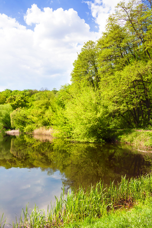 Forest lake in spring. One of the Goloseevsky lakes, cascade of natural ponds formed on the Goloseyevsky creek passing through the territory of Goloseevsky Forest, Kiev, Ukraine