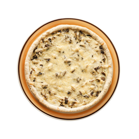 Chicken tart with mushrooms and cheese. Flat lay, top view. Isolated on white background with clipping path