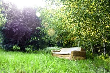 Empty old secluded sofa among spring nature with green trees and grass. Solitude concept