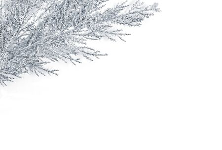 Silver Christmas decoration. Tree branch in a corner. Christmas, New year decorative element