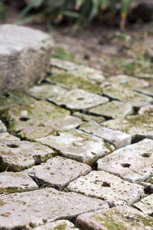 Old brick paving background closeup. Vintage brick texture, perspective view, shallow depth