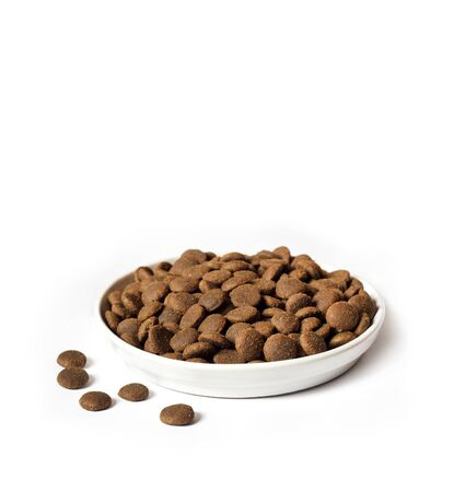 Dry pet food in a white ceramic bowl isolated on white background. Copy space Archivio Fotografico