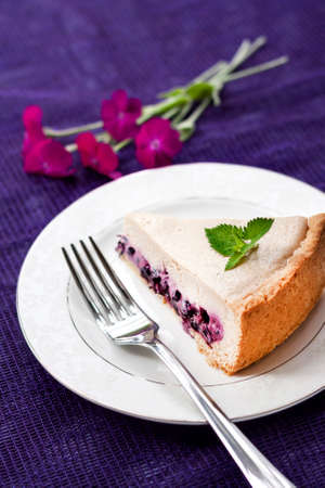 Slice of coffee cake with blueberries on a white plate. Stock Photo
