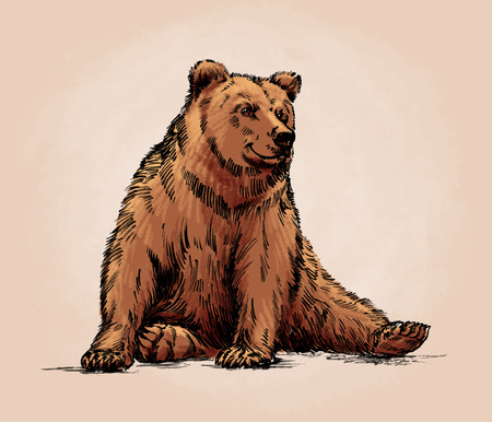 agressive: color engrave ink draw isolated grizzly bear Stock Photo