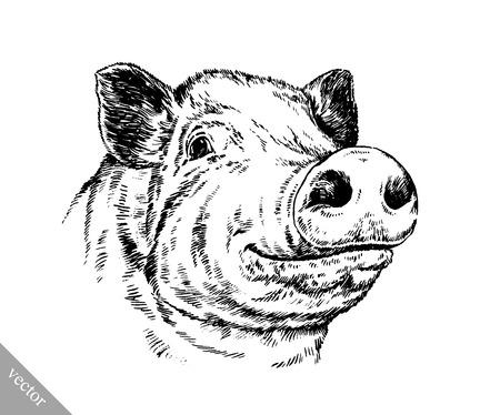 vecteur d'encre peinture au pinceau noir et blanc dessiner isolé illustration de porc