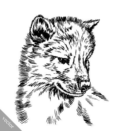 zwart en wit vector graveren inkt tekenen geïsoleerd wolf Vector Illustratie