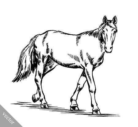 zwart en wit graveren inkt gelijkspel vector paardillustratie Vector Illustratie