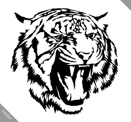 black and white engrave ink draw tiger vector illustration