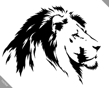 black and white linear draw lion vector illustration