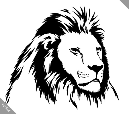 noir et blanc tirage linéaire vecteur lion illustration Vecteurs