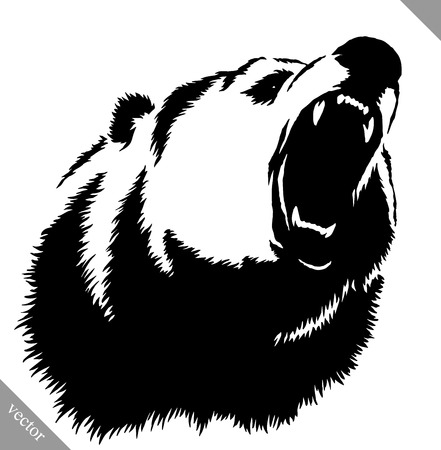 흑백 잉크 곰 곰 벡터 일러스트 레이션