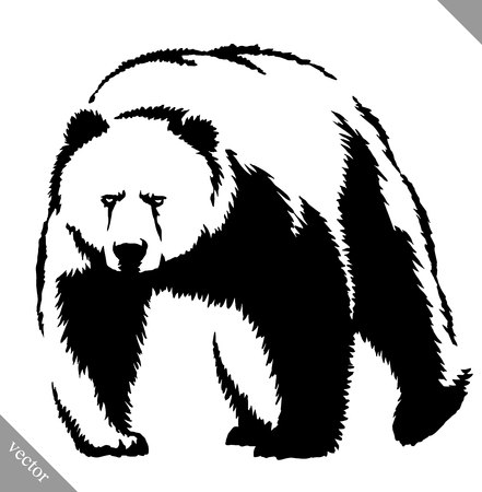 agressive: black and white engrave ink draw bear vector illustration