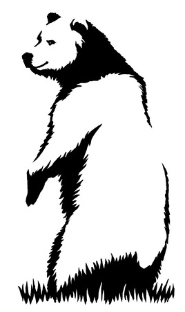 agressive: black and white engrave ink draw bear illustration Stock Photo