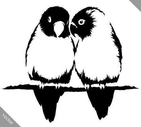 lovebird: black and white linear paint draw parrot bird vector illustration