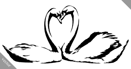 swans: black and white linear paint draw swans bird vector illustration