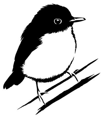 sparrow bird: black and white  Sparrow bird illustration Stock Photo