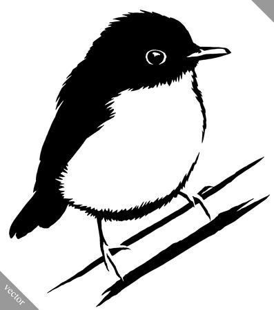 black and white linear  sparrow bird illustration Illustration
