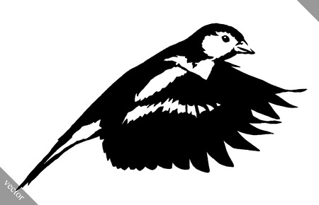 chickadee: black and white linear paint draw tit bird illustration Illustration