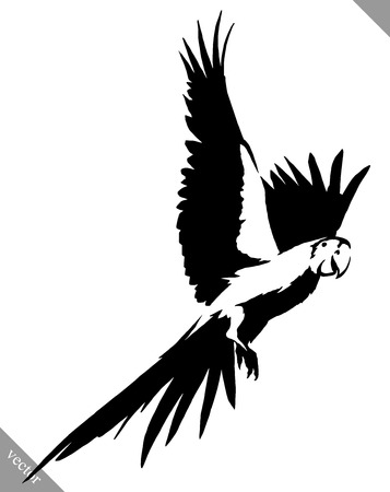 black and white linear  parrot bird illustration