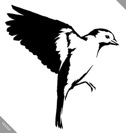 chickadee: black and white linear tit bird illustration