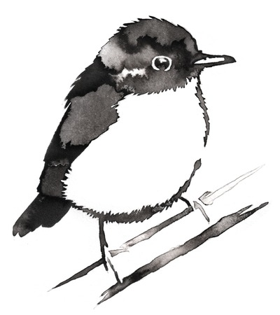 black and white painting with water and ink draw Sparrow bird illustration