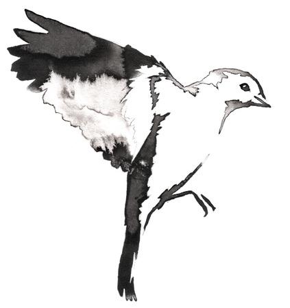 zwart en wit schilderen met water en inkt te trekken tit vogelillustratie Stockfoto