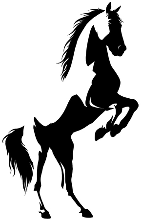 black and white linear draw horse illustration Banque d'images