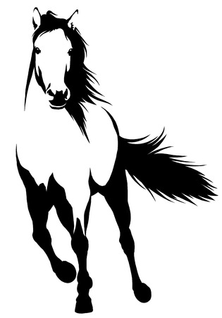 black and white linear draw horse illustration 免版税图像